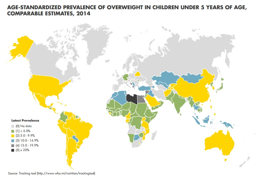 the global epidemic of childhood obesity in developed and developing countries Childhood obesity intervention programs: a systematic review  both developed and developing countries  (sharma, 2007) the childhood obesity epidemic has been projected to result in a decrease in life expectancy of 2–5 years in the 21st century in what.