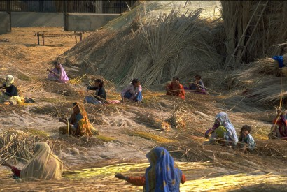 Indian women and children bundle grain stalks after the harvest. Margaret W. Nea for Bread for the World.