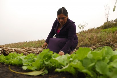 Esther, a Mexican farmer. Ivan Munoz/Oxfam