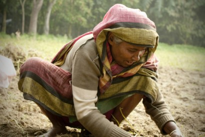 Woman farmer in Bangladesh. Photo by Shykh Seraj
