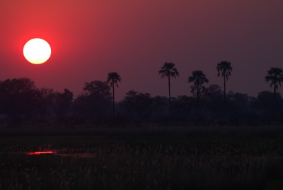 Sunset in the Okavango Delta, Botswana. Wikimedia Commons.