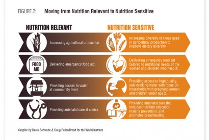 Without a comprehensive approach, we will not end malnutrition by 2030. Infographic by Doug Puller and Derek Schwabe / Bread for the World Institute