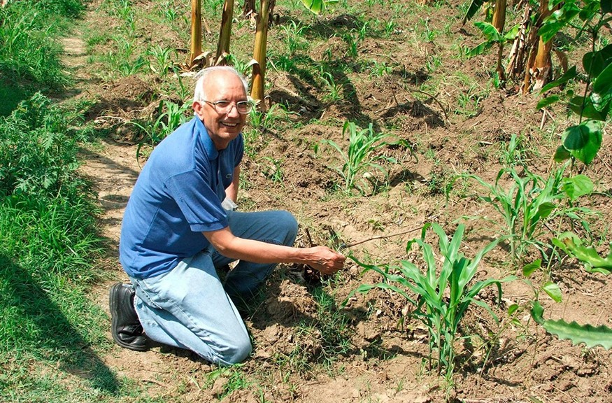 """Soil scientist Dr. Rattan Lal, working here in a field in Haiti, has been chosen as this year's World Food Prize laureate for his """"pioneering research on the restoration of soil health in Africa, Asia and Latin America."""" World Food Prize"""