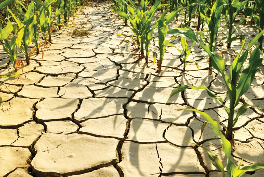 Climate change threatens to reverse the remarkable progress the world has made against hunger.