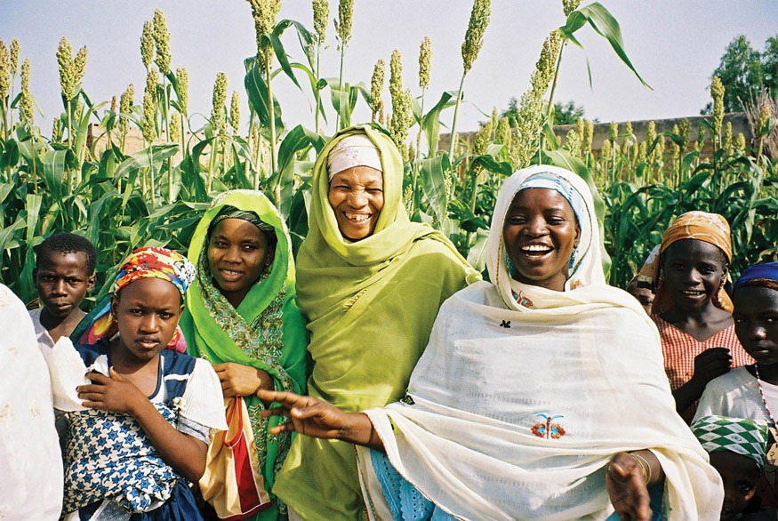 USAID is helping farmers' organizations, like this group in Kano, Nigeria, to plant and harvest higher-yielding crops. Photo: USAID