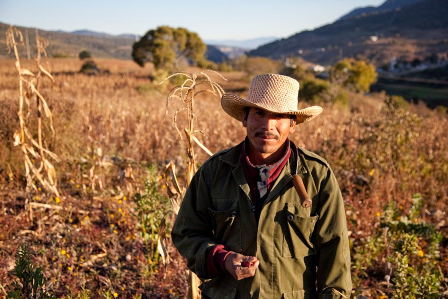 The U.S. agriculture system is heavily dependent on immigration labor. One of the repercussions of increasingly hostile conditions against unauthorized immigrants has been a shortage of farm labor. Photo: Laura Elizabeth Pohl / Bread for the World.