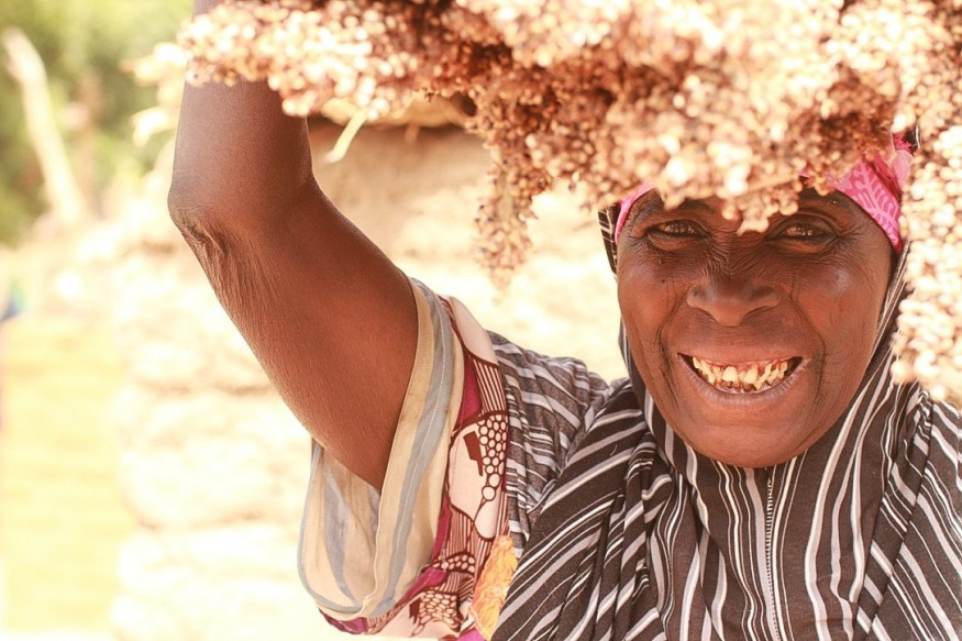 Salamatou, a mother of nine, has 120 trees on her three hectares of land. Joelma Pereira/World Vision