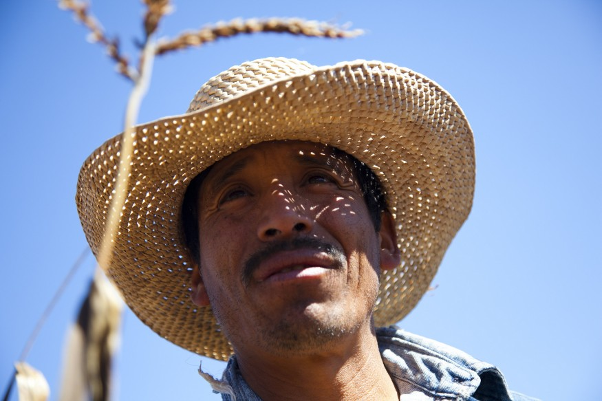Santiago Cruz, a farmer in Oaxaca, Mexico. Photo: Laura Pohl / Bread for the World